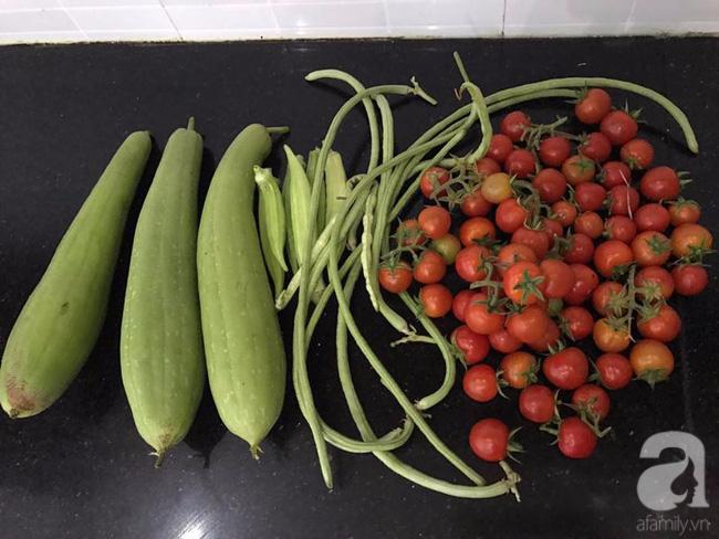 Sân thượng 10m² xanh mướt của bà mẹ dám bỏ sự nghiệp để ở nhà trồng rau, chăm con - Ảnh 20.