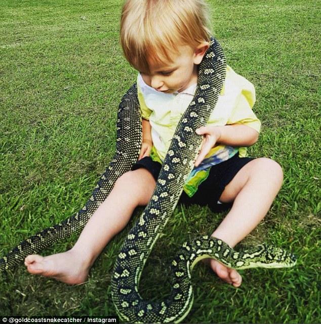 Chưa đầy 2 tuổi, cậu bé này đã dám làm việc khiến nhiều người lớn nhìn thấy phải rùng mình - Ảnh 1.