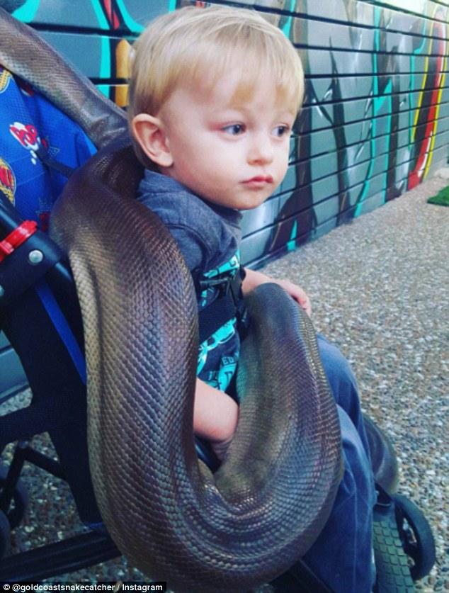 Chưa đầy 2 tuổi, cậu bé này đã dám làm việc khiến nhiều người lớn nhìn thấy phải rùng mình - Ảnh 2.