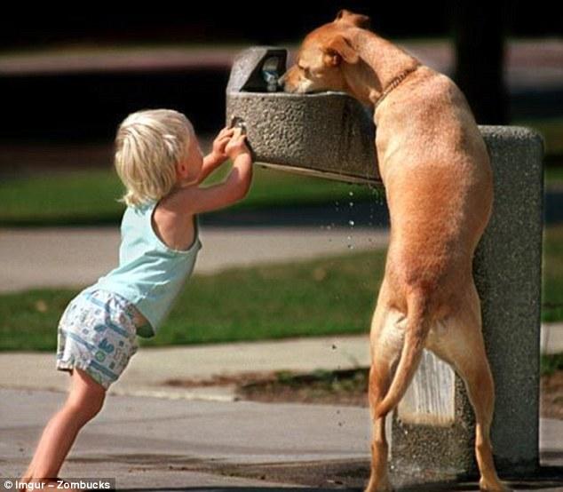 Những bức ảnh vui cho thấy trẻ em và động vật cũng có tinh thần đoàn kết đáng ngưỡng mộ - Ảnh 1.