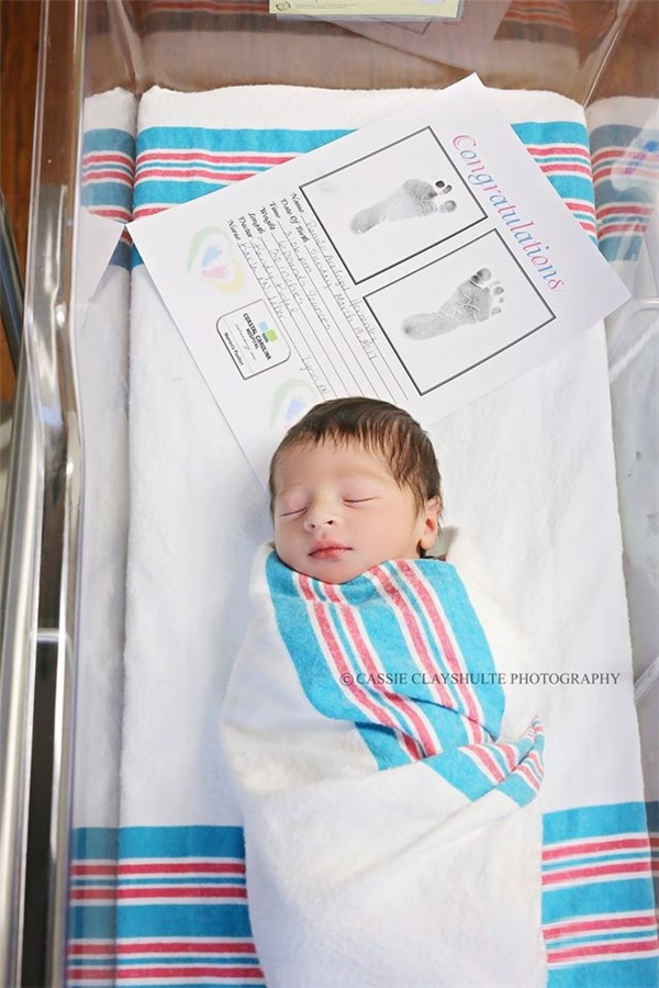 Câu chuyện bất ngờ đằng sau bức ảnh chụp Romeo và Juliet vừa mới sinh - Ảnh 1.