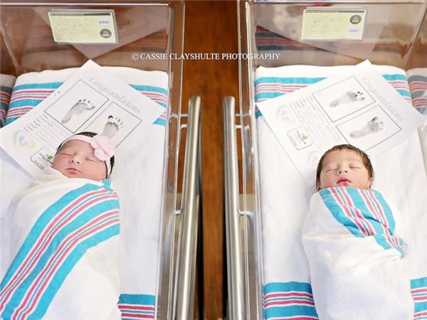 Câu chuyện bất ngờ đằng sau bức ảnh chụp Romeo và Juliet vừa mới sinh - Ảnh 3.