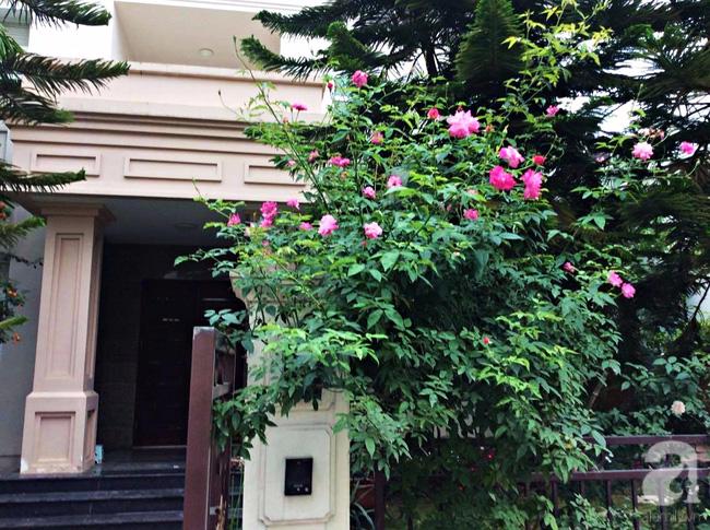 Biệt thự sân vườn sở hữu những khoảng xanh đẹp đến từng chi tiết của vợ chồng KTS ở Hà Nội - Ảnh 2.