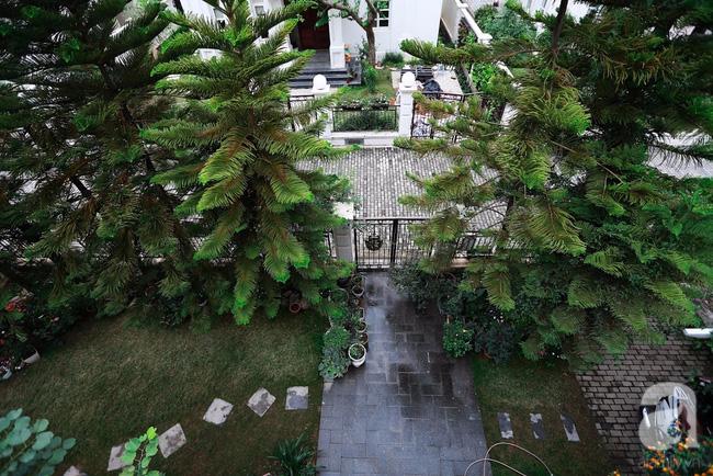 Biệt thự sân vườn sở hữu những khoảng xanh đẹp đến từng chi tiết của vợ chồng KTS ở Hà Nội - Ảnh 3.
