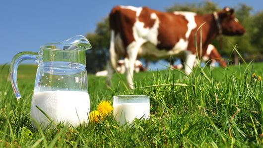 Không chỉ cho con uống sữa, đã đến lúc các mẹ cần tìm hiểu về sữa organic - Ảnh 1.