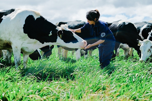Không chỉ cho con uống sữa, đã đến lúc các mẹ cần tìm hiểu về sữa organic - Ảnh 2.