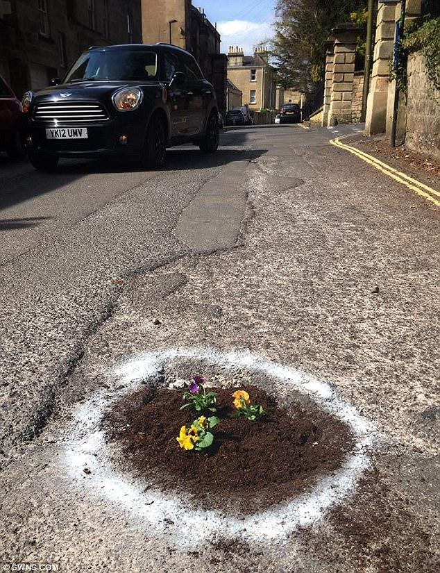 Sự thật bất ngờ phía sau hình ảnh hàng chục khóm hoa mọc lên giữa đường bê tông - Ảnh 4.