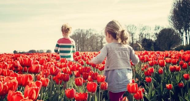 Mẹ Anh và mẹ Mỹ tiết lộ lý do trẻ em Hà Lan luôn hạnh phúc nhất thế giới - Ảnh 3