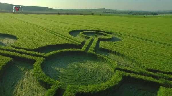 Bí ẩn những vòng tròn khổng lồ như con quay xuất hiện giữa cánh đồng - Ảnh 4.