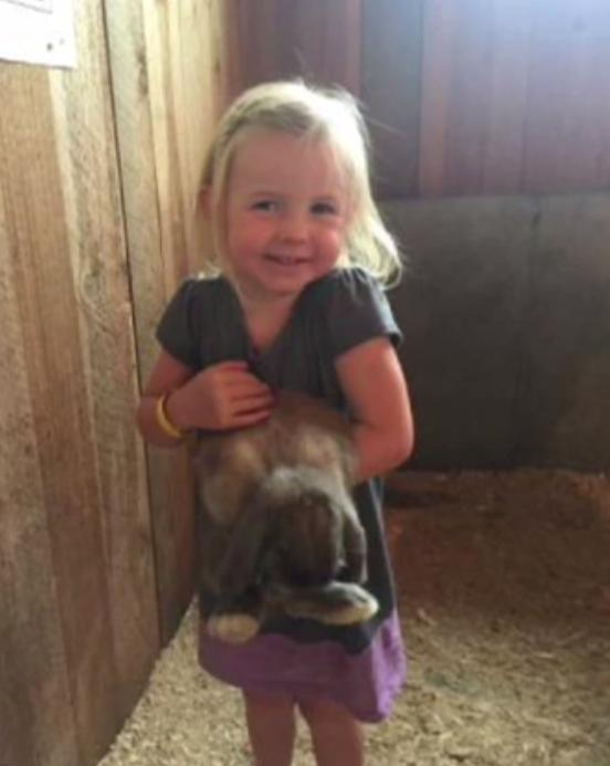 Sau khi đi thăm sở thú về, em gái 3 tuổi tử vong, anh trai 5 tuổi nguy kịch vì nhiễm khuẩn - Ảnh 2.
