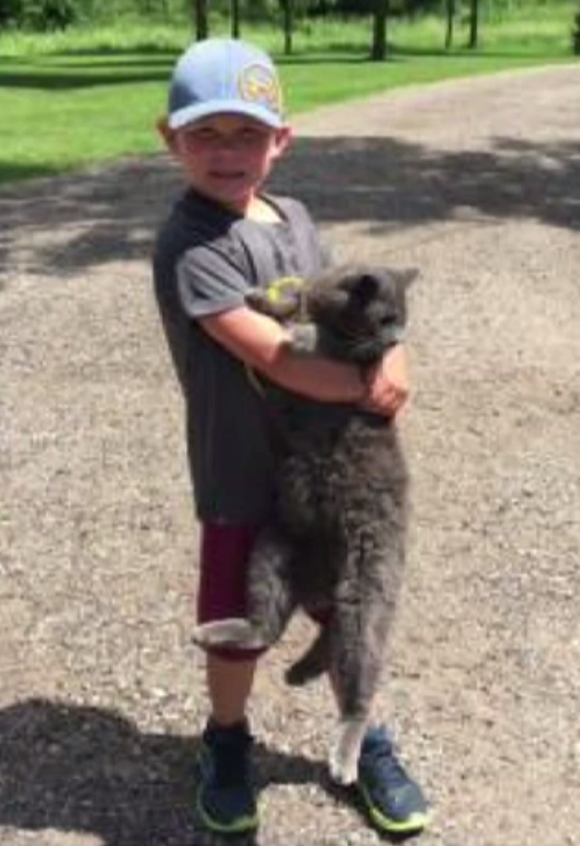 Sau khi đi thăm sở thú về, em gái 3 tuổi tử vong, anh trai 5 tuổi nguy kịch vì nhiễm khuẩn - Ảnh 3.