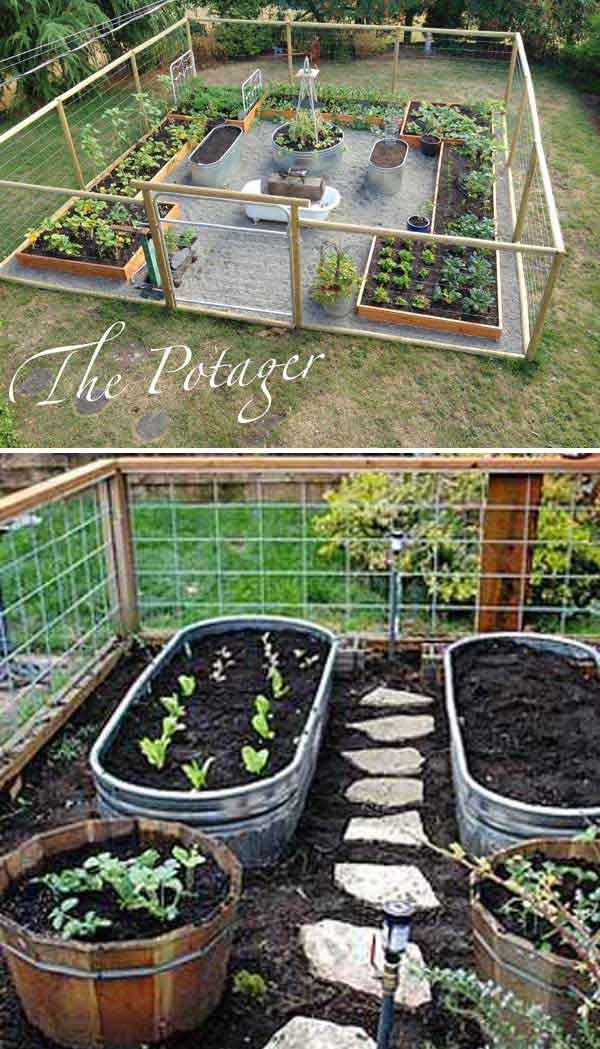 Tham khảo ngay những cách sáng tạo này để biến mảnh đất trống thành vườn rau đẹp mắt - Ảnh 2.