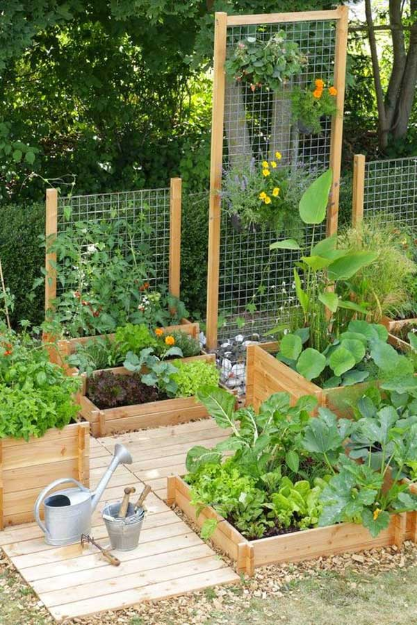 Tham khảo ngay những cách sáng tạo này để biến mảnh đất trống thành vườn rau đẹp mắt - Ảnh 9.