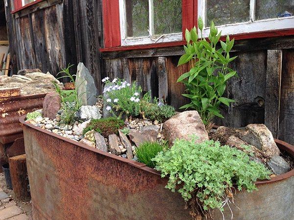 Xô chậu nhôm cũng có thể làm duyên trong trang trí vườn với những ý tưởng ít người nghĩ tới - Ảnh 5.