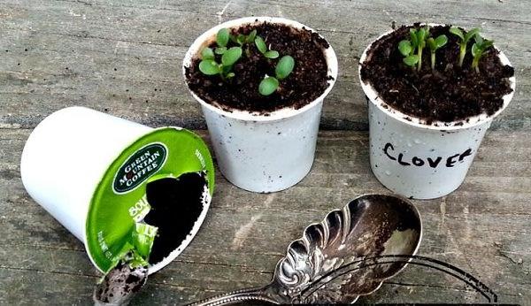 10 cách tự làm khay trồng hạt giống siêu tiện lợi và tiết kiệm dành cho những ai yêu làm vườn - Ảnh 6.
