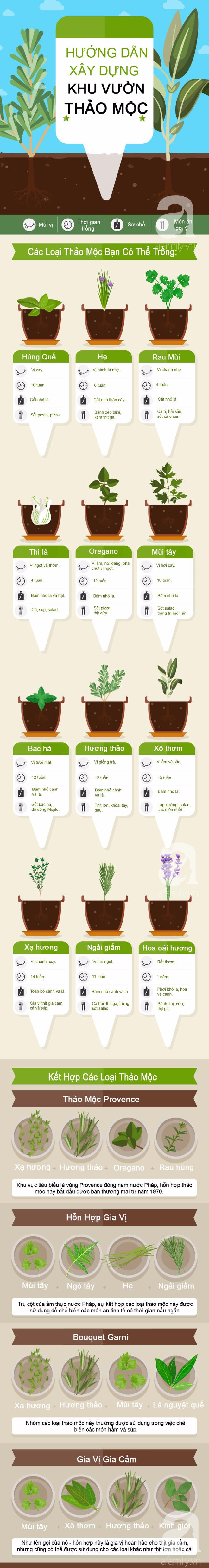 Infographic này sẽ thay đổi thói quen trồng thảo mộc tự phát của bạn - Ảnh 1.