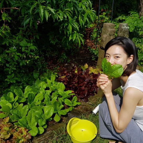 Khu vườn rau sạch xinh xắn của vợ chồng tài tử Bae Yong Joon trong biệt thự triệu đô - Ảnh 3.