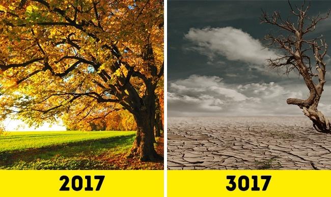 Bạn có tưởng tượng được cuộc sống của loài người sẽ như thế nào trong 1.000 năm nữa? - Ảnh 6.