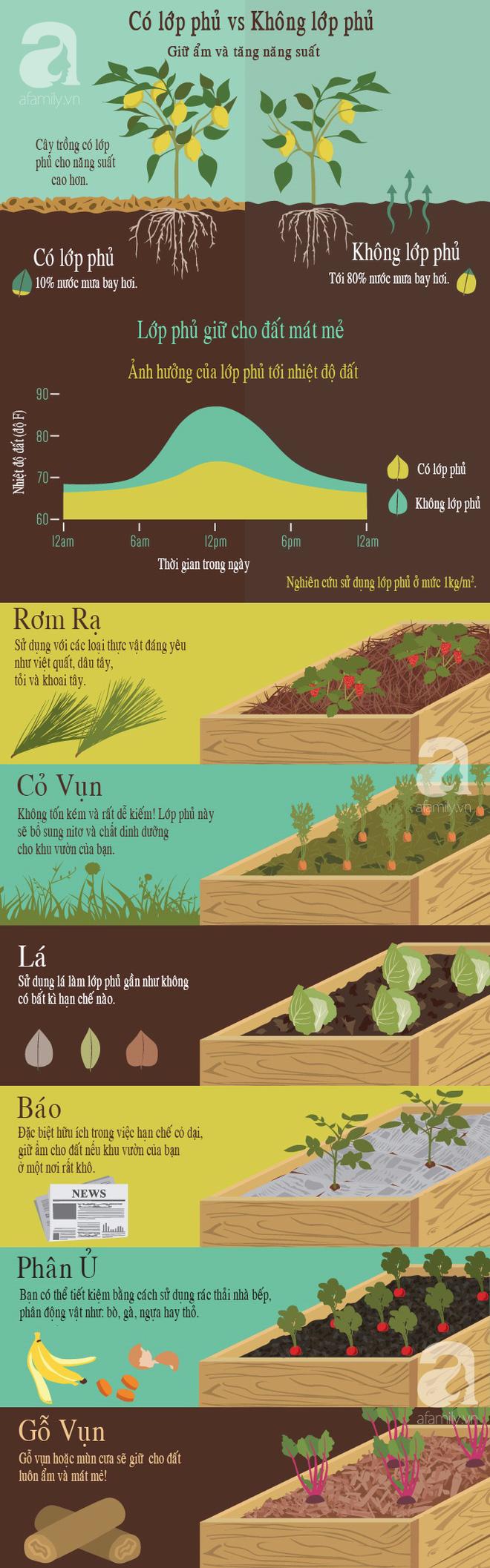 Cách giúp bạn tăng năng suất cây trồng cho khu vườn cực hiệu quả mà lại dễ làm - Ảnh 1.