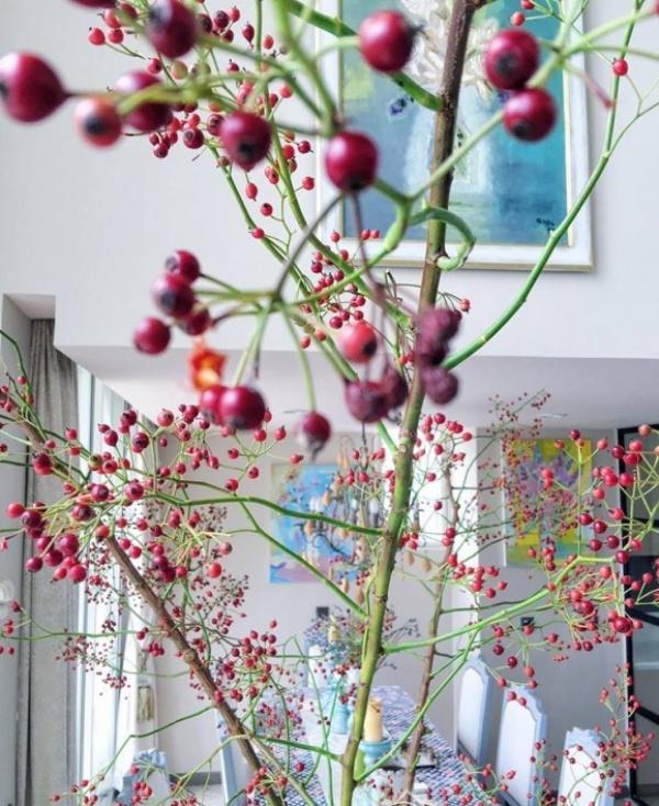 Ngắm hai căn hộ xa hoa bậc nhất showbiz Việt của nhà thiết kế Lý Quí Khánh - Ảnh 8.