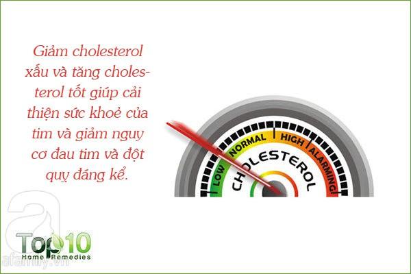Đây là 7 công dụng của lô hội được các nhà nghiên cứu thừa nhận, từ bảo vệ da, tóc đến ngừa bệnh tiểu đường - Ảnh 5.