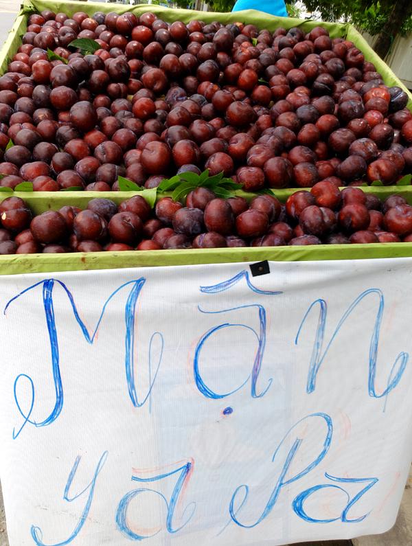 Mận khủng to như nắm tay nguồn gốc Trung Quốc đội lốt mận Sapa bán tràn lan trên đường phố Hà Nội - Ảnh 2.