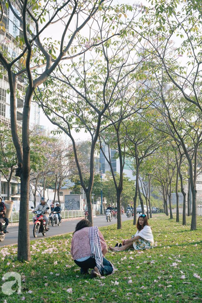 Một ngày nắng chói chang, ngắm hoa kèn hồng để thấy lòng lịm mát giữa Sài Gòn - Ảnh 7.