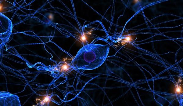 Kích thích trực tiếp dòng điện xuyên sọ đem lại hi vọng mới cho bệnh nhân chết não - Ảnh 3.