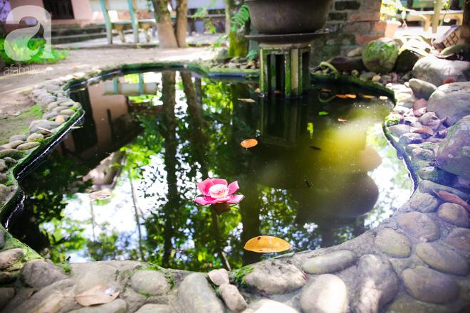 Ghé Huế, vào chùa Thiên Mụ 400 năm tuổi ngắm những đóa sala - hoa của sự yên lành - Ảnh 6.