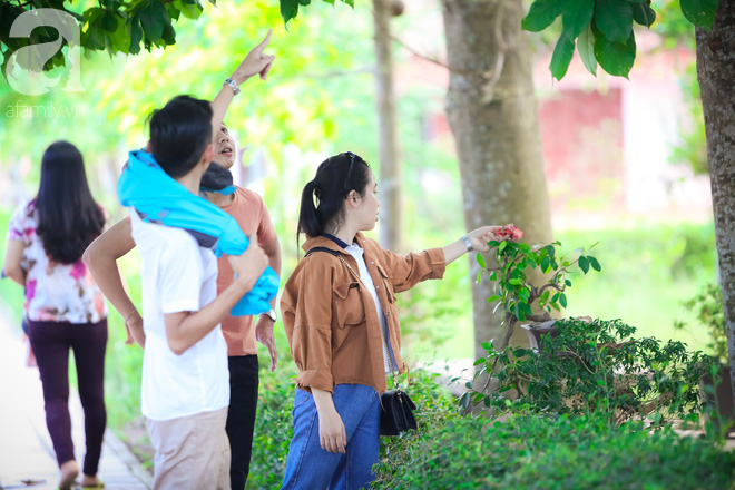 Ghé Huế, vào chùa Thiên Mụ 400 năm tuổi ngắm những đóa sala - hoa của sự yên lành - ảnh 15