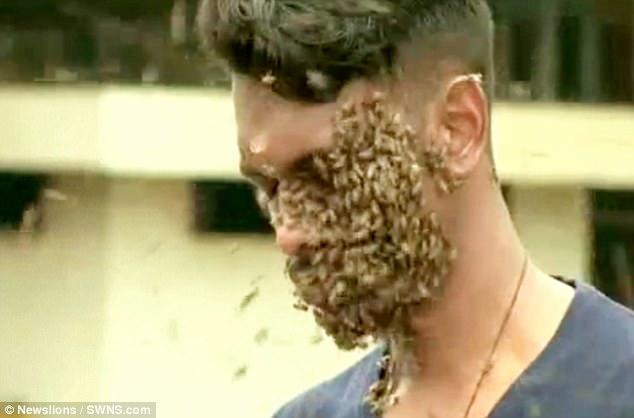 Kinh dị người đàn ông để 60.000 con ong bu kín mặt vẫn bình thản đọc sách - Ảnh 1.
