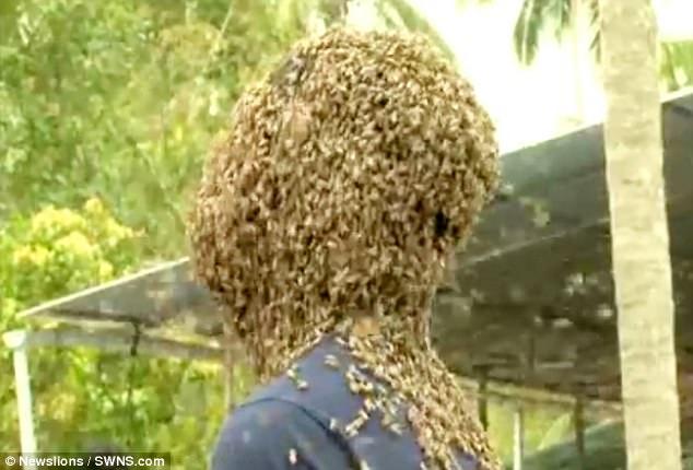 Kinh dị người đàn ông để 60.000 con ong bu kín mặt vẫn bình thản đọc sách - Ảnh 2.