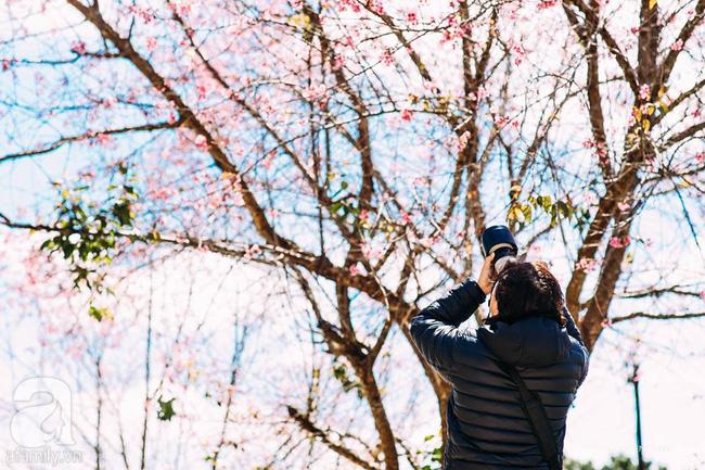 4 điểm đến đẹp như mơ, nhất định nên đến để cảm nhận trọn vẹn cảnh sắc tháng 2 - Ảnh 10.
