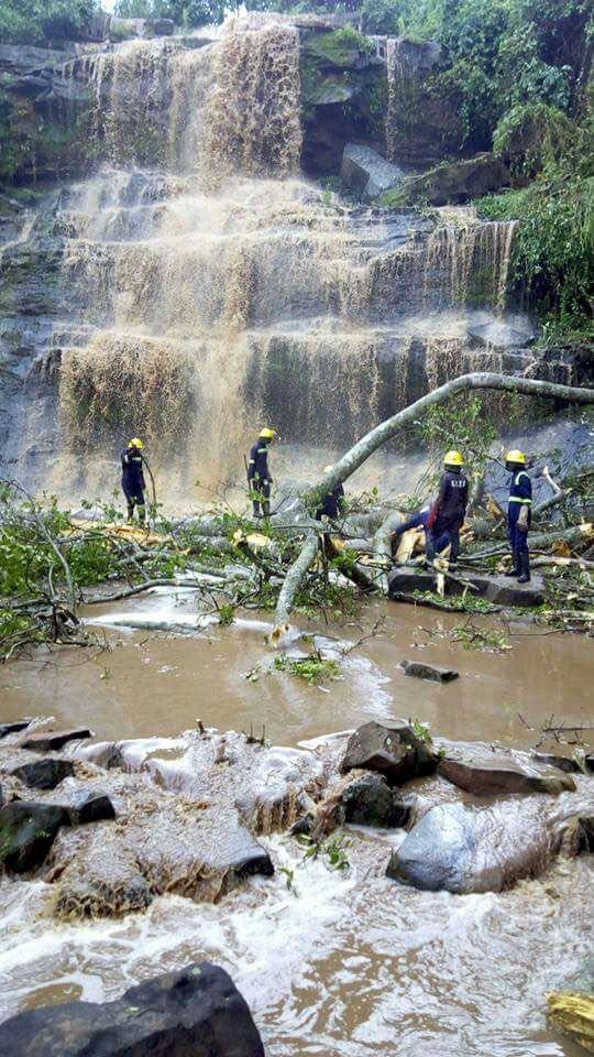 Bị cây rơi từ trên thác đè trúng, 20 người chết - Ảnh 2.