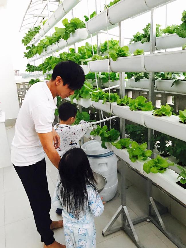 Khu vườn trên sân thượng xanh mướt mát, ăn mãi chẳng hết rau sạch của gia đình Lý Hải - Minh Hà - Ảnh 17.
