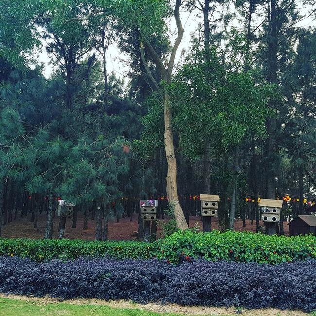 6 resort siêu gần, cực thích hợp cho những chuyến nghỉ ngơi cuối tuần ở Hà Nội - Ảnh 6.