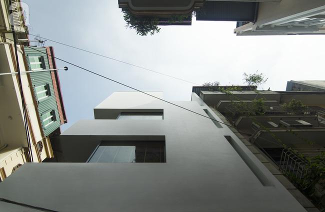 Ngôi nhà 60m² trong ngõ ở Giang Văn Minh: Từ cứ mưa to là ngập nay đẹp miễn chê, tầng nào cũng lung linh nắng - Ảnh 2.