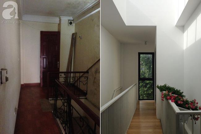 Ngôi nhà 27m² ở Hà Nội: Từ chiếc hộp đóng kín thành tổ ấm thoáng, xanh, đầy cảm hứng của vợ chồng trẻ - Ảnh 3.