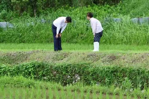 Nhân viên đoàn hộ tống Thủ tướng Nhật Bản cúi đầu chào và cảm ơn người đi xe đạp vì đã nhường đường - Ảnh 1.