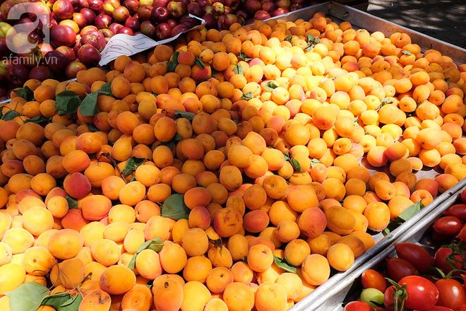Trải nghiệm của cô gái Việt trên đất Ý: đi chợ nông dân mua rau quả, được khuyến mại niềm vui - Ảnh 9.