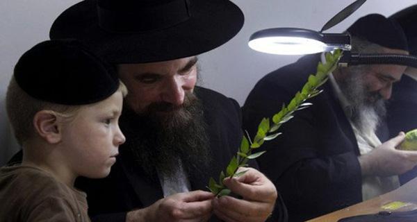 Ông bố Do Thái dạy con 1+1 > 2 và sau này cậu bé trở thành CEO nổi tiếng: Bài học về tư duy khác - Ảnh 1.