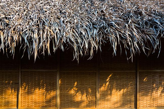 Mê mẩn với ngôi nhà vườn lợp mái lá dừa đẹp ngang khu nghỉ dưỡng cao cấp ở Trà Vinh - Ảnh 8.