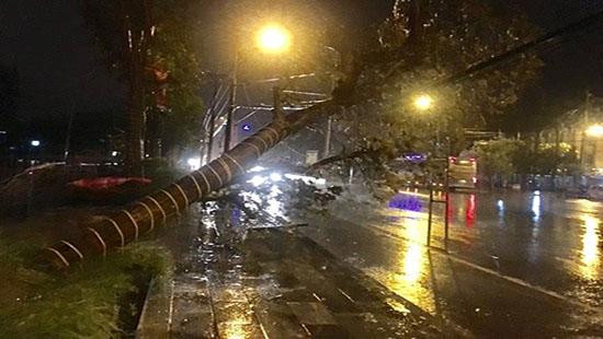 Bão số 2 gây mưa lớn và gió mạnh cho các tỉnh bắc Trung Bộ - Ảnh 2.