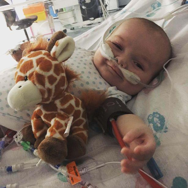 Em bé sơ sinh kiên cường nhất quả đất, giành lại sự sống từ tay tử thần sau 15 tiếng đồng hồ tim ngừng đập - Ảnh 2.