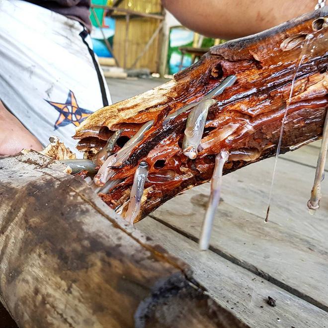 4 món đặc sản châu Á phải ăn sống, nuốt tươi, Việt Nam cũng góp mặt 1 món - Ảnh 2.