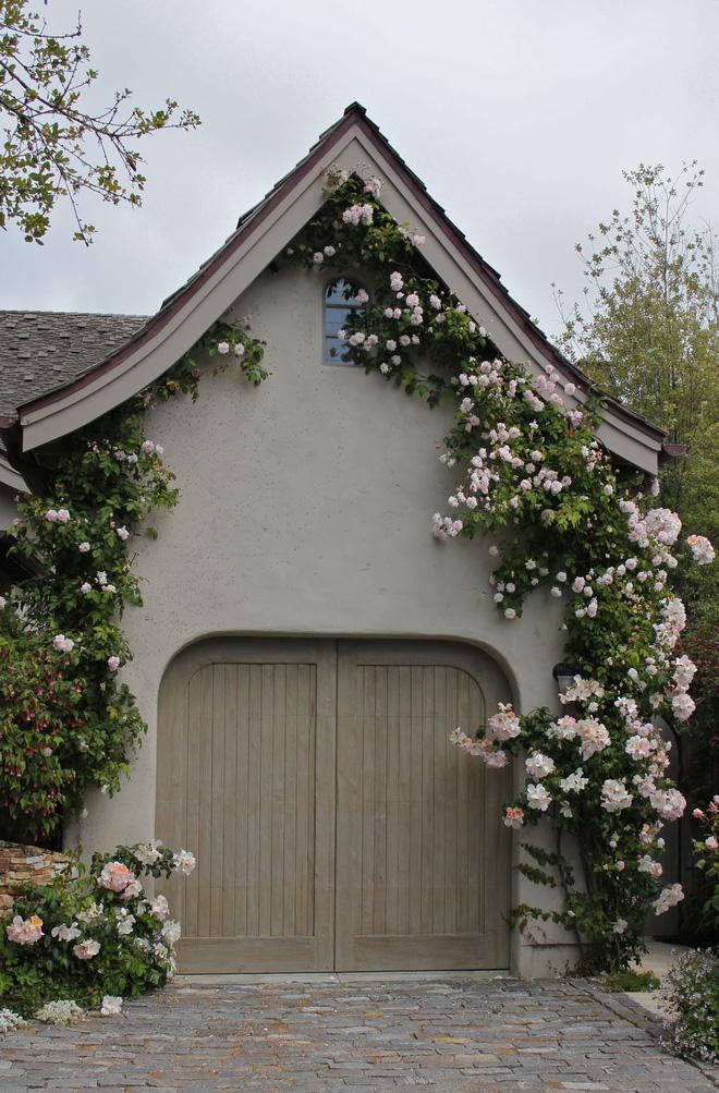 Mãn nhãn với những ngôi nhà có dàn hoa leo, ai đi qua cũng phải dừng chân ngắm nhìn - Ảnh 2.