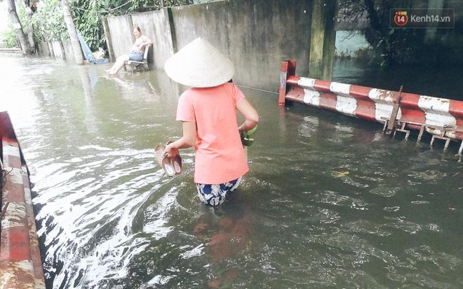 Cảnh tượng bi hài của người Sài Gòn sau những ngày mưa ngập: Sáng quăng lưới, tối thả cần câu bắt cá giữa đường - Ảnh 2.