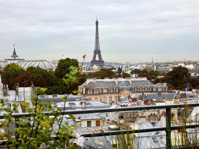 Khu vườn trên mái nhà ngập tràn cây trái với hướng nhìn thẳng ra tháp Eiffel - Ảnh 1.