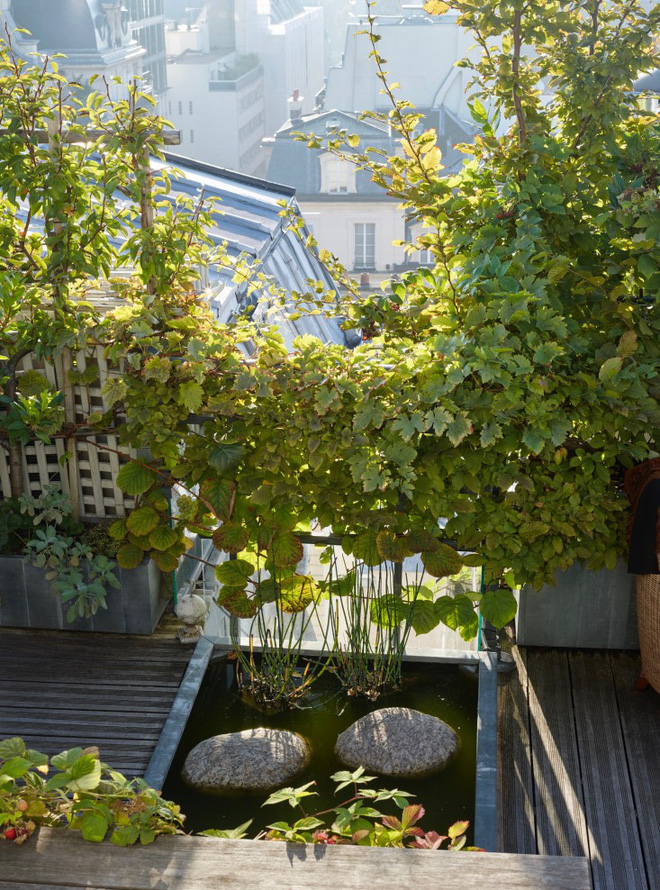 Khu vườn trên mái nhà ngập tràn cây trái với hướng nhìn thẳng ra tháp Eiffel - Ảnh 6.