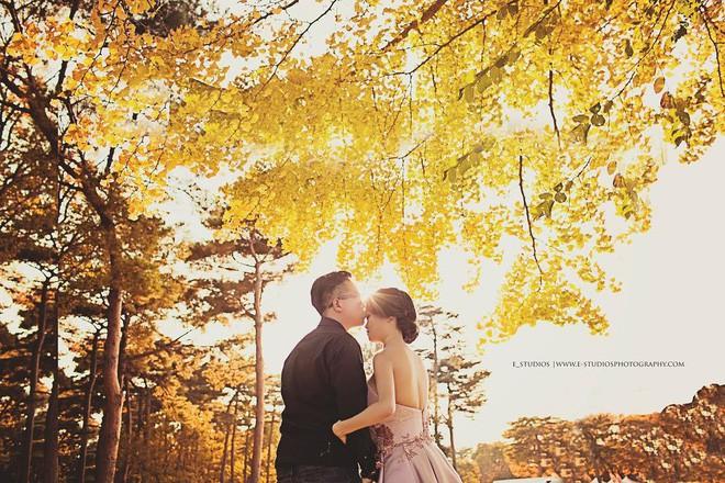 Mùa cưới đến rồi, bỏ túi ngay những địa chỉ chụp ảnh đẹp mê ly với lá vàng, lá đỏ này thôi - Ảnh 14.